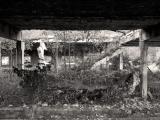 soviet rural ruins 03