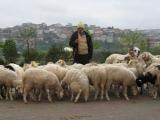 Istanbul visit 2007