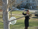 making wind harps in a public park