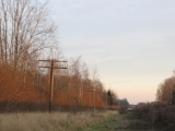 recording abandoned telephone lines in rural Estonia