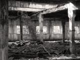 soviet rural ruins 09