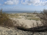 baltic sea dunes on the Curonian Split in Lithuania