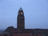 birds circling the Dresden Rathaus