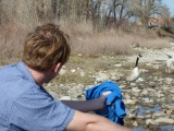 field recording by the bow river in Calgary