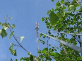 tower_wires