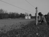 TTF-Backfield-wires02